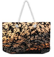 Bosque Sunrise Blastoff Weekender Tote Bag