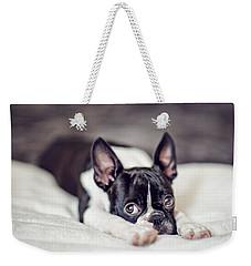 Boston Terrier Puppy Weekender Tote Bag