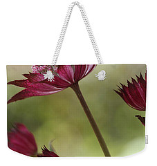 Botanica Weekender Tote Bag by Connie Handscomb