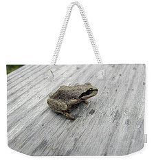 Weekender Tote Bag featuring the photograph Botanical Gardens Tree Frog by Cheryl Hoyle