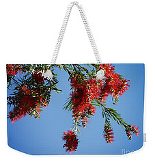 Bottle Brushing The Sky Weekender Tote Bag