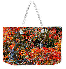 Branches Of Color Weekender Tote Bag by Cathy Dee Janes