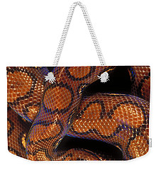 Brazilian Rainbow Boa Weekender Tote Bag by Art Wolfe