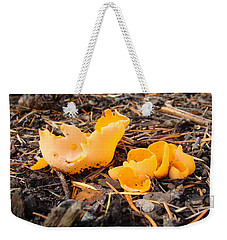 Weekender Tote Bag featuring the photograph Brilliance In Orange by Cheryl Hoyle