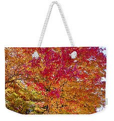 brilliant autumn colors on a Marblehead street Weekender Tote Bag
