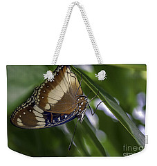 Brilliant Butterfly Weekender Tote Bag by Ray Warren