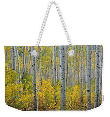 Weekender Tote Bag featuring the photograph Brilliant Colors Of The Autumn Aspen Forest by Cascade Colors