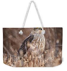 Broad-winged Hawk Weekender Tote Bag
