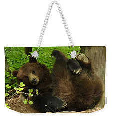 European Brown Bear Weekender Tote Bag by Phil Banks