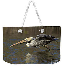 Weekender Tote Bag featuring the photograph Brown Pelican Fishing Photo by Meg Rousher