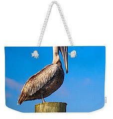 Brown Pelican - Pelecanus Occidentalis Weekender Tote Bag by Carsten Reisinger