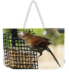 Brown Thrasher Weekender Tote Bag by Lizi Beard-Ward