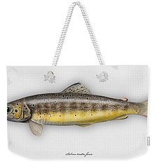 Brown Trout - Salmo Trutta Morpha Fario - Salmo Trutta Fario - Game Fish - Flyfishing Weekender Tote Bag