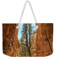 Bryce Canyon Trees Weekender Tote Bag by Tammy Wetzel