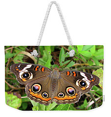 Weekender Tote Bag featuring the photograph Buckeye Butterfly by Donna Brown