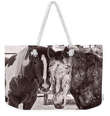 Weekender Tote Bag featuring the photograph Buddies In Snow by Denise Romano
