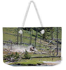 Buffalo Dust Bath Weekender Tote Bag