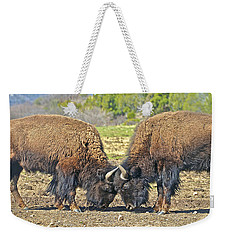 Buffaloes At Play Weekender Tote Bag