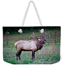 Weekender Tote Bag featuring the photograph Bugle Solo From Bull Elk by John Haldane