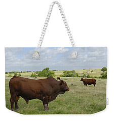 Weekender Tote Bag featuring the photograph Bull And Cattle by Charles Beeler