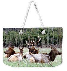 Bull Elk And His Girls Weekender Tote Bag