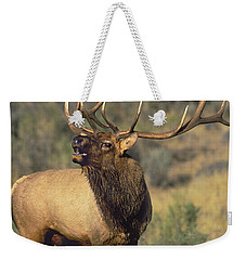 Bull Elk In Rut Bugling Yellowstone Wyoming Wildlife Weekender Tote Bag