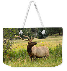 Bull Elk In Wildflowers Weekender Tote Bag