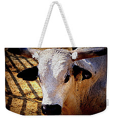 Bull Riders - Nightmare - Rodeo Bull Weekender Tote Bag