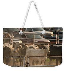 Bulls Weekender Tote Bag