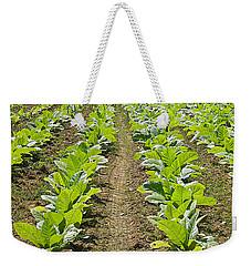Burley Tobacco Weekender Tote Bag