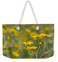 Weekender Tote Bag featuring the photograph Burrmarigold by Paul Rebmann