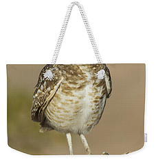 Weekender Tote Bag featuring the photograph Burrowing Owl by Bryan Keil