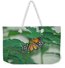 Weekender Tote Bag featuring the photograph Butterflies Gentle Touch by Thomas Woolworth