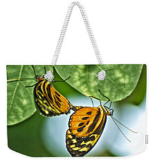 Weekender Tote Bag featuring the photograph Butterflies Mating by Thomas Woolworth