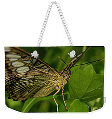 Weekender Tote Bag featuring the photograph Butterfly 2 by Olga Hamilton