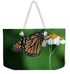 Weekender Tote Bag featuring the photograph Butterfly 3 by Leticia Latocki