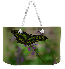 Weekender Tote Bag featuring the photograph Butterfly 4 by Leticia Latocki
