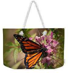 Weekender Tote Bag featuring the photograph Butterfly 5 by Leticia Latocki