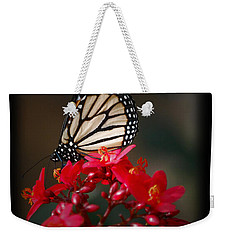 Weekender Tote Bag featuring the photograph Butterfly 6 by Leticia Latocki
