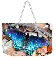 Weekender Tote Bag featuring the photograph Butterfly Blue  by Deena Stoddard