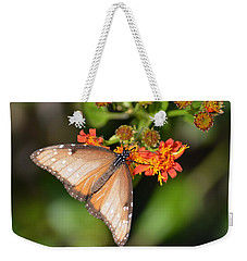 Weekender Tote Bag featuring the photograph Butterfly On Mexican Flame by Debra Martz