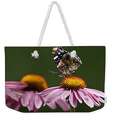 Weekender Tote Bag featuring the photograph Butterfly Red Admiral On Echinacea by Peter v Quenter