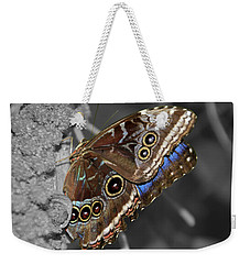 Butterfly Spot Color 1 Weekender Tote Bag