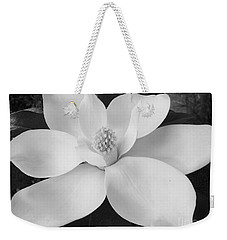 B W Magnolia Blossom Weekender Tote Bag by D Hackett