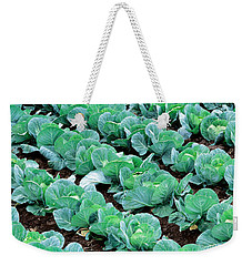 Cabbage, Yamhill Co, Oregon, Usa Weekender Tote Bag by Panoramic Images