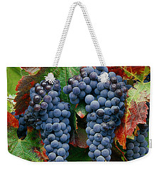 5b6374-cabernet Sauvignon Grapes At Harvest Weekender Tote Bag