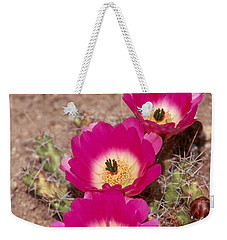 Cactus 1 Weekender Tote Bag by Andy Shomock