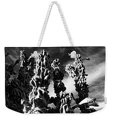 Weekender Tote Bag featuring the photograph Cactus 2 Bw by Mariusz Kula