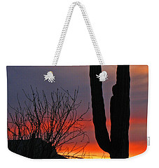 Weekender Tote Bag featuring the photograph Cactus At Sunset by Marcia Socolik