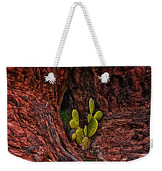 Weekender Tote Bag featuring the photograph Cactus Dwelling by Mark Myhaver